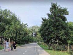 25 de chioşcuri vor fi amplasate pe Faleza Inferioară a Dunării
