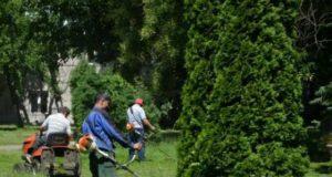Damen caută 100 ucenici iar Gospodărire Urbană 30 lucrători la spaţii verzi