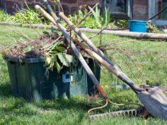 Deșeurile vegetale din fața blocului te deranjează Ecosal ți le ia gratuit!