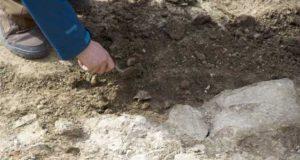 Săpături arheologice la monumentul istoric Cavoul Roman de pe Oțelarilor