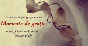 Momente de grație - Expoziție de fotografie la Olympos Cafe