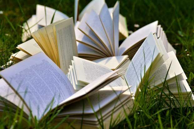 Festivalului Internațional de Literatură