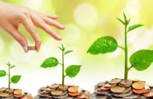 Educație financiară pentru adolescenții brăileni cu brokerul Gabriel Stoica
