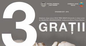 """Program 8-10 februarie la Teatrul Dramatic """"Fani Tardini"""" din Galați"""