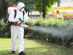 Ecosal începe dezinsecția la sol în parcurile din Galați