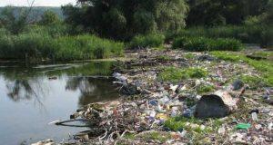 O nouă ecologizare pe malul tulcean al Dunării, în scop caritabil