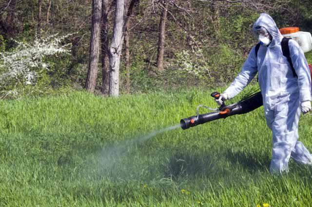 A doua etapă de dezinsecție la sol se desfășoară până pe 19 mai