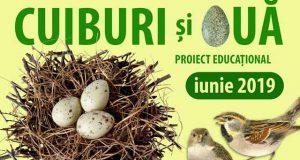 Cuiburi și ouă - proiect educațional al Muzeului de Științele Naturii Galați