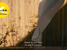 Proiecție film Frații la Muzeul de Arta Vizuală Galati