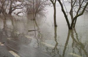 Primăria Galați ia măsuri - nivelul Dunării este în continuă creștere