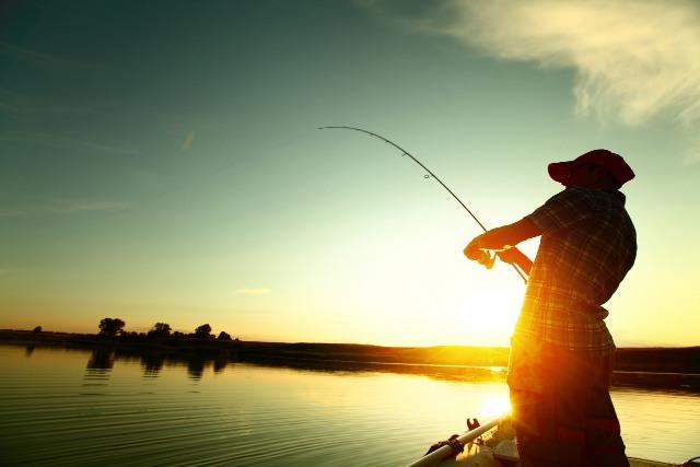 Descoperă ce bălți de pescuit în Brăila și Galați există