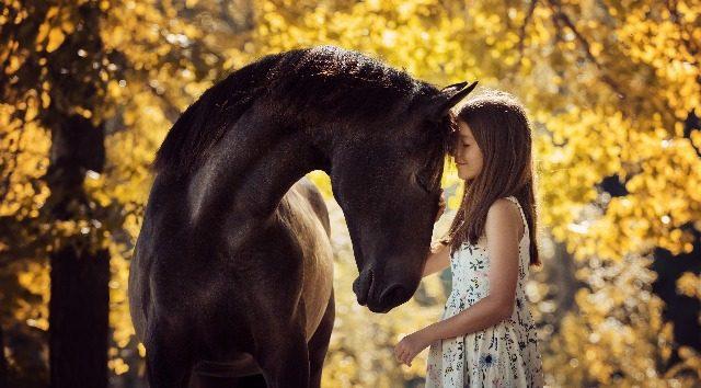 Kavalkada - echitație în Galați și timp de calitate petrecut în preajma cailor