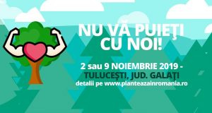Plantează la Tulucești! Contribuie și tu la o Românie mai verde!