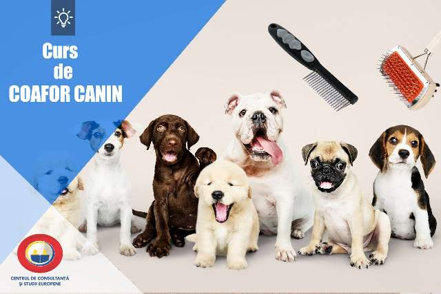 coafor canin